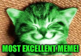 happy RayCat | MOST EXCELLENT MEME! | image tagged in happy raycat | made w/ Imgflip meme maker