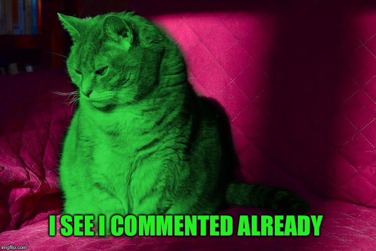 Cantankerous RayCat | I SEE I COMMENTED ALREADY | image tagged in cantankerous raycat | made w/ Imgflip meme maker