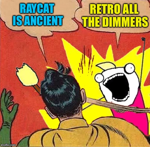 XY slaps Robin | RAYCAT IS ANCIENT RETRO ALL THE DIMMERS | image tagged in xy slaps robin | made w/ Imgflip meme maker