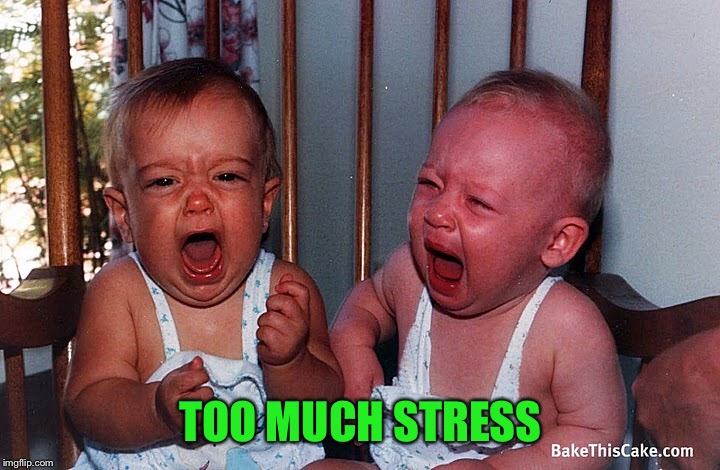 TOO MUCH STRESS | made w/ Imgflip meme maker