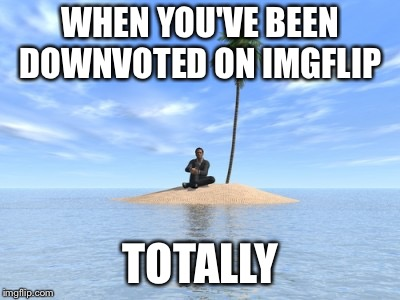 WHEN YOU'VE BEEN DOWNVOTED ON IMGFLIP TOTALLY | image tagged in desert island | made w/ Imgflip meme maker