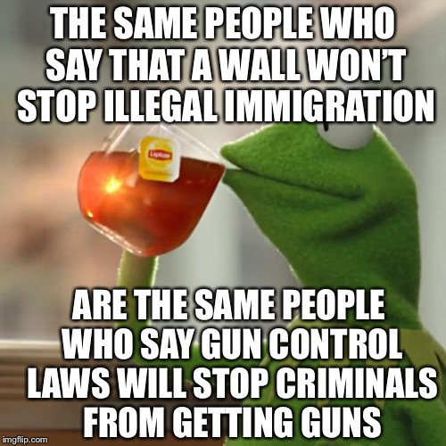 But That's None Of My Business |  THE SAME PEOPLE WHO SAY THAT A WALL WON'T STOP ILLEGAL IMMIGRATION; ARE THE SAME PEOPLE WHO SAY GUN CONTROL LAWS WILL STOP CRIMINALS FROM GETTING GUNS | image tagged in memes,but thats none of my business,kermit the frog,gun control,illegal immigration,liberal logic | made w/ Imgflip meme maker