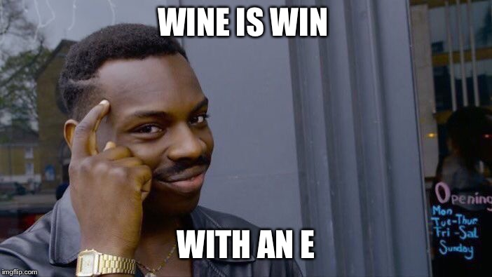 Roll Safe Think About It Meme | WINE IS WIN WITH AN E | image tagged in memes,roll safe think about it | made w/ Imgflip meme maker