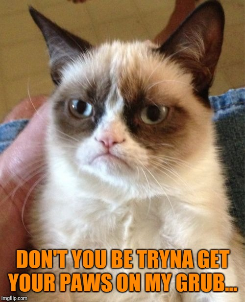 Grumpy Cat Meme | DON'T YOU BE TRYNA GET YOUR PAWS ON MY GRUB... | image tagged in memes,grumpy cat | made w/ Imgflip meme maker