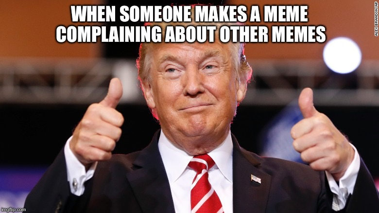 Lol ok | WHEN SOMEONE MAKES A MEME COMPLAINING ABOUT OTHER MEMES | image tagged in donald trump thumbs up,memes,donald trump,imgflip users,trump | made w/ Imgflip meme maker