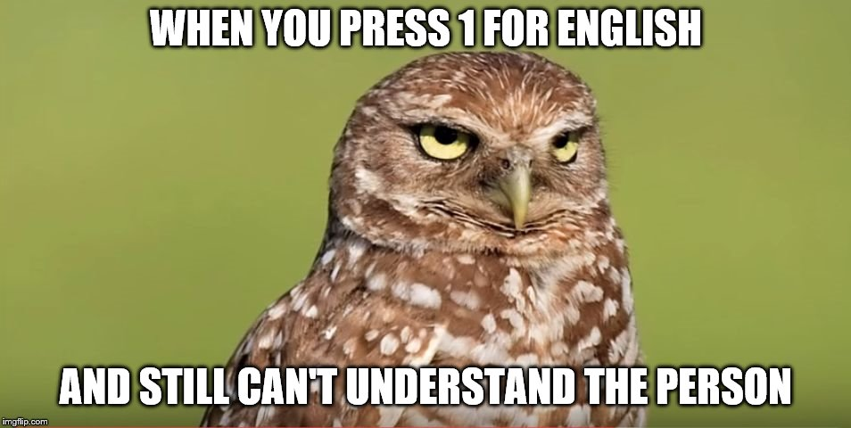 Death Stare Owl | WHEN YOU PRESS 1 FOR ENGLISH AND STILL CAN'T UNDERSTAND THE PERSON | image tagged in death stare owl | made w/ Imgflip meme maker
