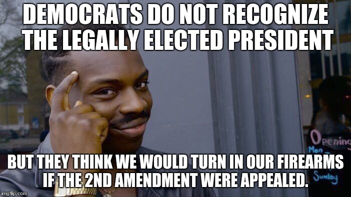 Roll Safe Think About It Meme | DEMOCRATS DO NOT RECOGNIZE THE LEGALLY ELECTED PRESIDENT BUT THEY THINK WE WOULD TURN IN OUR FIREARMS IF THE 2ND AMENDMENT WERE APPEALED. | image tagged in memes,roll safe think about it | made w/ Imgflip meme maker