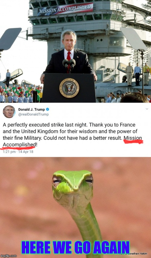 History repeats itself, why am I not surprised? | HERE WE GO AGAIN | image tagged in skeptical snake,trump,bush,mission accomplished,memes | made w/ Imgflip meme maker