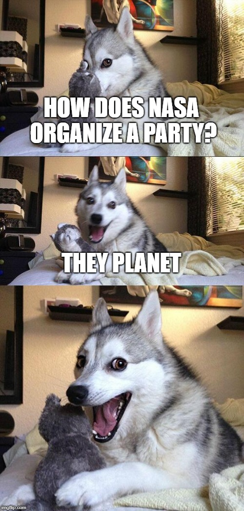 PUNZZZ | HOW DOES NASA ORGANIZE A PARTY? THEY PLANET | image tagged in memes,bad pun dog | made w/ Imgflip meme maker
