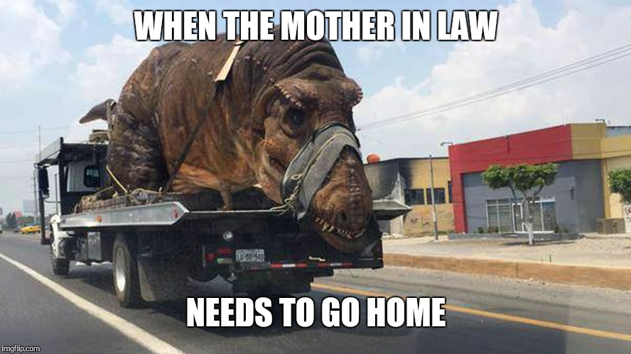 trex |  WHEN THE MOTHER IN LAW; NEEDS TO GO HOME | image tagged in trex | made w/ Imgflip meme maker