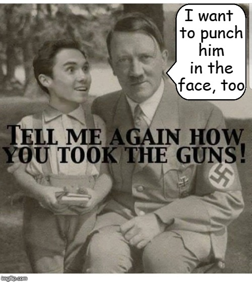 Taking Away the Rights of Others for Your Own Agenda Makes Strange Bedfellows | I want to punch him in the face, too | image tagged in vince vance,adolf hitler,david hogg,gun control,2nd amendment,punching a punk in the face | made w/ Imgflip meme maker