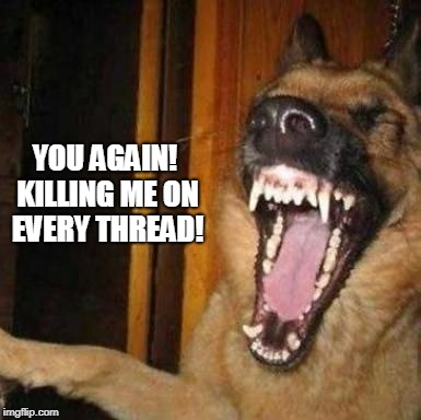 Laughing Dog | YOU AGAIN! KILLING ME ON EVERY THREAD! | image tagged in laughing dog | made w/ Imgflip meme maker