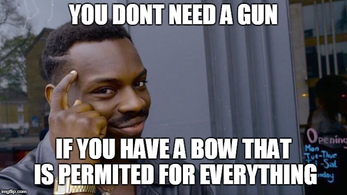 Roll Safe Think About It Meme | YOU DONT NEED A GUN IF YOU HAVE A BOW THAT IS PERMITED FOR EVERYTHING | image tagged in memes,roll safe think about it | made w/ Imgflip meme maker