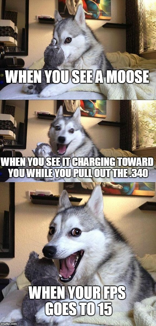 Bad Pun Dog Meme | WHEN YOU SEE A MOOSE WHEN YOU SEE IT CHARGING TOWARD YOU WHILE YOU PULL OUT THE .340 WHEN YOUR FPS GOES TO 15 | image tagged in memes,bad pun dog | made w/ Imgflip meme maker