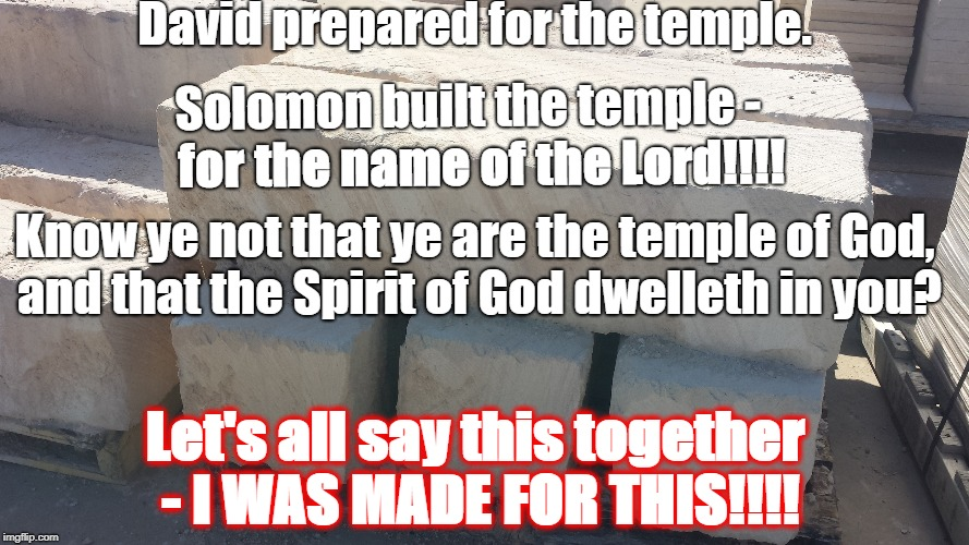 David prepared for the temple. Solomon built the temple - for the name of the Lord!!!! Know ye not that ye are the temple of God, and that t | image tagged in i was made for this | made w/ Imgflip meme maker