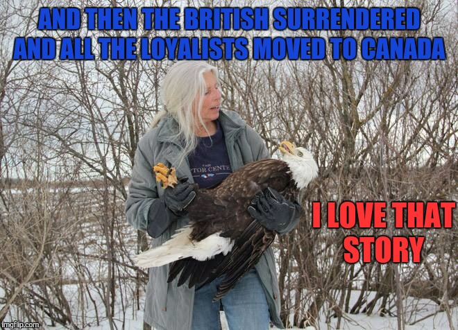 Tell me another story about freedom  | AND THEN THE BRITISH SURRENDERED AND ALL THE LOYALISTS MOVED TO CANADA I LOVE THAT STORY | image tagged in memes,bald eagle,america,america vs canada,american revolution,freedom | made w/ Imgflip meme maker