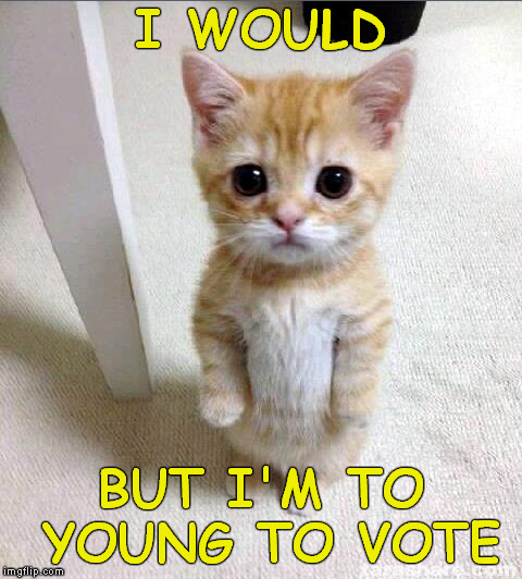I WOULD BUT I'M TO YOUNG TO VOTE | made w/ Imgflip meme maker