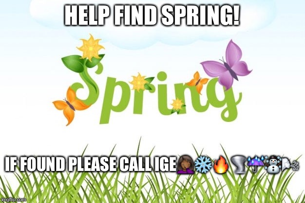 HELP FIND SPRING! IF FOUND PLEASE CALL IGE | image tagged in funny | made w/ Imgflip meme maker