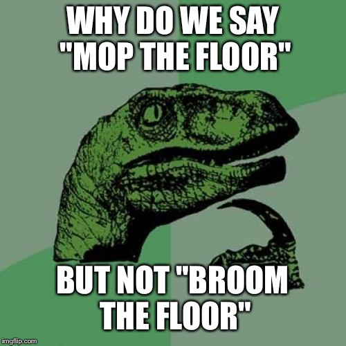 "Philosoraptor Meme | WHY DO WE SAY ""MOP THE FLOOR"" BUT NOT ""BROOM THE FLOOR"" 