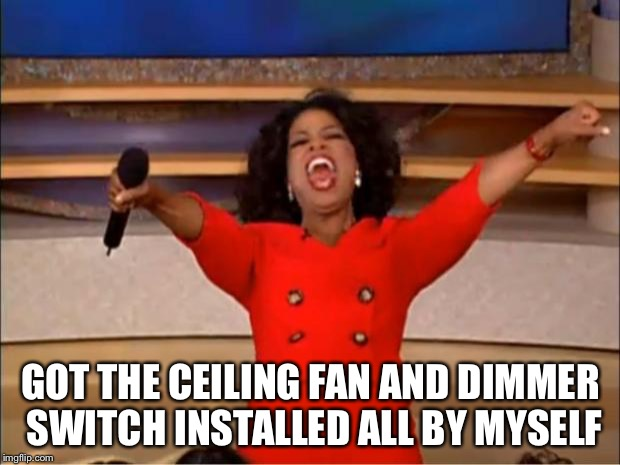 Oprah You Get A Meme | GOT THE CEILING FAN AND DIMMER SWITCH INSTALLED ALL BY MYSELF | image tagged in memes,oprah you get a | made w/ Imgflip meme maker