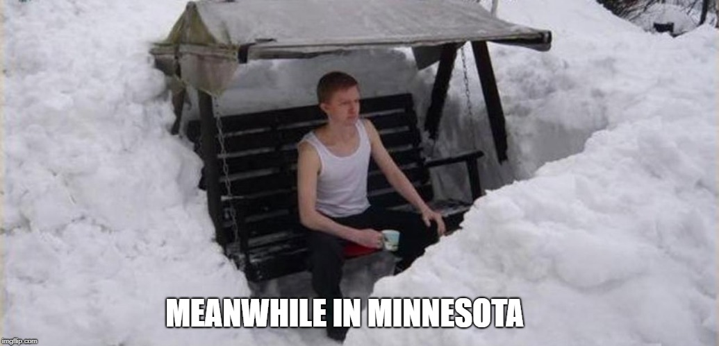 MEANWHILE IN MINNESOTA | image tagged in den1 | made w/ Imgflip meme maker