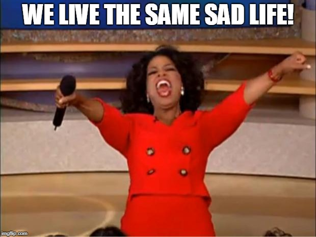 Oprah You Get A Meme | WE LIVE THE SAME SAD LIFE! | image tagged in memes,oprah you get a | made w/ Imgflip meme maker