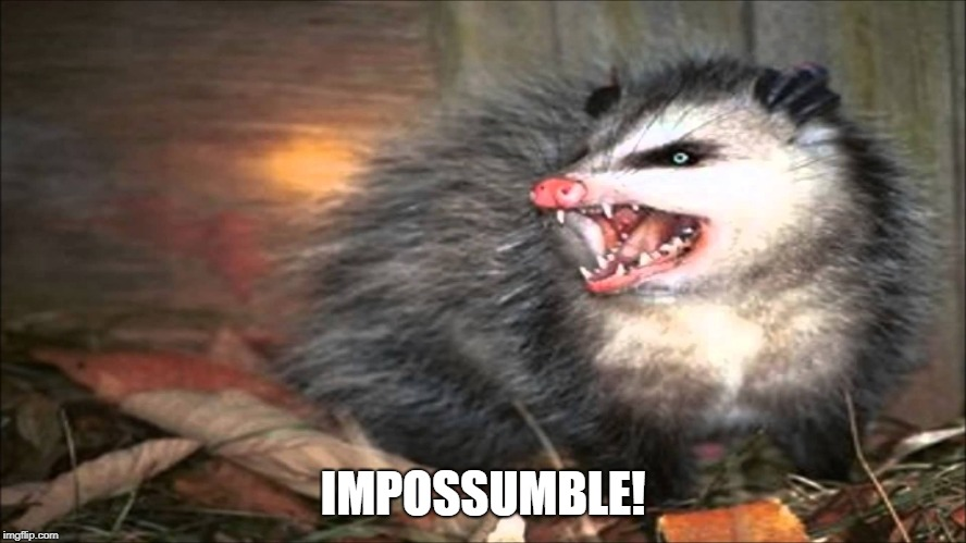 opossum | IMPOSSUMBLE! | image tagged in opossum | made w/ Imgflip meme maker