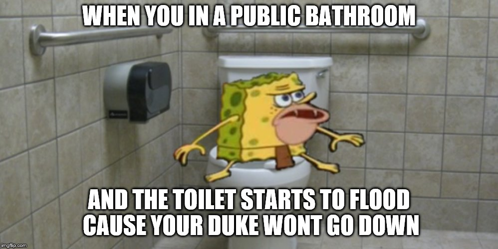 Spongegar | WHEN YOU IN A PUBLIC BATHROOM AND THE TOILET STARTS TO FLOOD CAUSE YOUR DUKE WONT GO DOWN | image tagged in spongegar | made w/ Imgflip meme maker