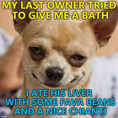 True story... :) |  MY LAST OWNER TRIED TO GIVE ME A BATH; I ATE HIS LIVER WITH SOME FAVA BEANS AND A NICE CHIANTI | image tagged in smirking dog,memes,silence of the lambs | made w/ Imgflip meme maker