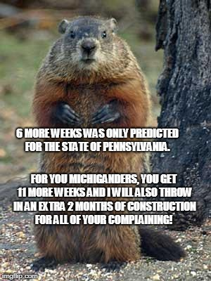 groundhog | 6 MORE WEEKS WAS ONLY PREDICTED FOR THE STATE OF PENNSYLVANIA. FOR YOU MICHIGANDERS, YOU GET 11 MORE WEEKS AND I WILL ALSO THROW IN AN EXTRA | image tagged in groundhog | made w/ Imgflip meme maker