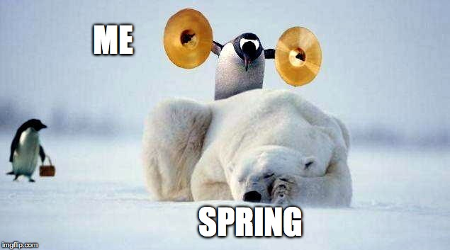 Ahh, If Only I Could... | ME SPRING | image tagged in wakey wakey | made w/ Imgflip meme maker