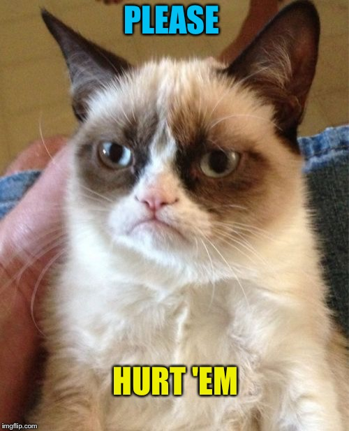 Grumpy Cat Meme | PLEASE HURT 'EM | image tagged in memes,grumpy cat | made w/ Imgflip meme maker