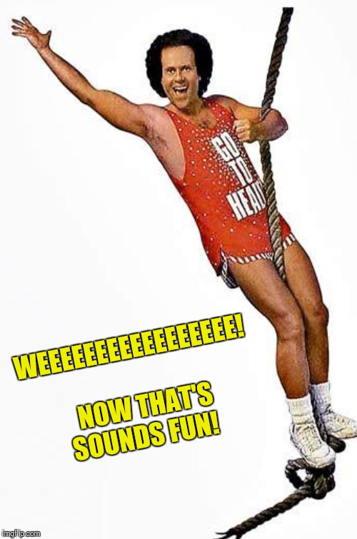WEEEEEEEEEEEEEEEEE!  NOW THAT'S SOUNDS FUN! | made w/ Imgflip meme maker
