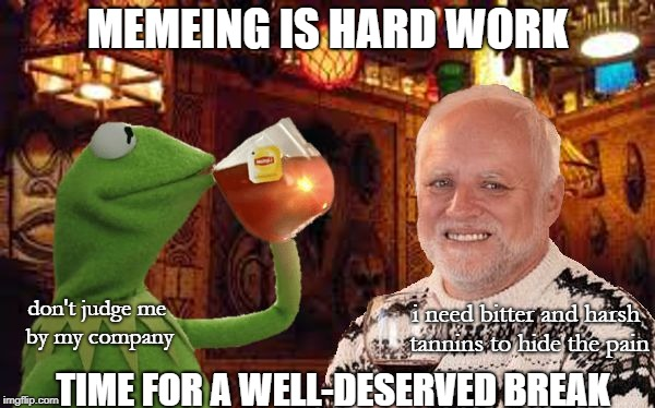Harold and Kermit enjoying a break from the memeing | MEMEING IS HARD WORK TIME FOR A WELL-DESERVED BREAK don't judge me by my company i need bitter and harsh tannins to hide the pain | image tagged in harold and kermit at the oasis lounge,memes,hide the pain harold,kermit the frog,but thats none of my business | made w/ Imgflip meme maker