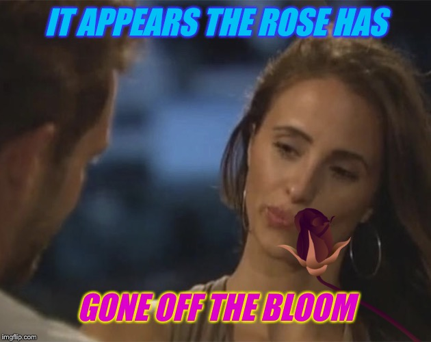 IT APPEARS THE ROSE HAS GONE OFF THE BLOOM | made w/ Imgflip meme maker