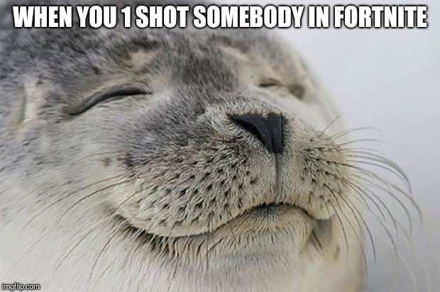 Satisfied Seal Meme | WHEN YOU 1 SHOT SOMEBODY IN FORTNITE | image tagged in memes,satisfied seal | made w/ Imgflip meme maker