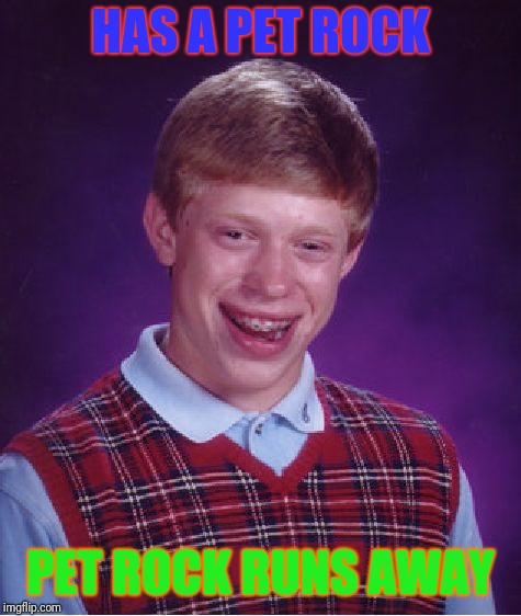 Bad Luck Brian Meme | HAS A PET ROCK PET ROCK RUNS AWAY | image tagged in memes,bad luck brian | made w/ Imgflip meme maker