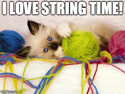 String | I LOVE STRING TIME! | image tagged in string | made w/ Imgflip meme maker