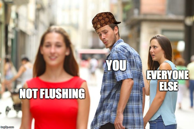 Distracted Boyfriend Meme | NOT FLUSHING YOU EVERYONE ELSE | image tagged in memes,distracted boyfriend,scumbag | made w/ Imgflip meme maker