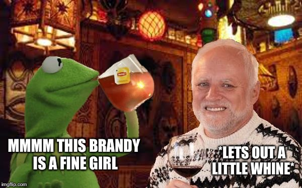 Harold and Kermit at the Oasis Lounge | MMMM THIS BRANDY IS A FINE GIRL *LETS OUT A LITTLE WHINE* | image tagged in harold and kermit at the oasis lounge,memes,hide the pain harold,kermit the frog,but thats none of my business | made w/ Imgflip meme maker