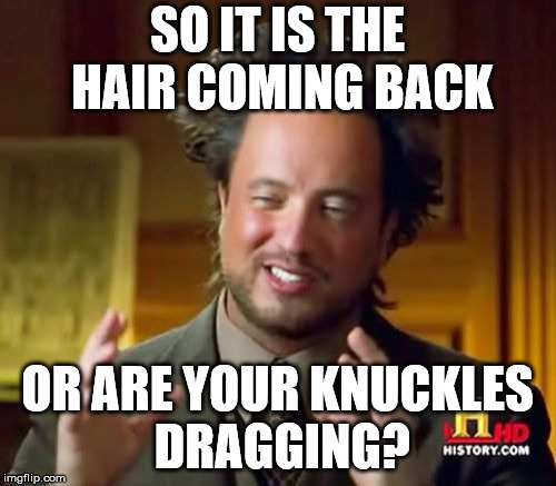 Ancient Aliens Meme | SO IT IS THE HAIR COMING BACK OR ARE YOUR KNUCKLES DRAGGING? | image tagged in memes,ancient aliens | made w/ Imgflip meme maker