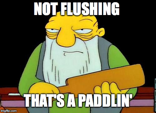 That's a paddlin' | NOT FLUSHING THAT'S A PADDLIN' | image tagged in memes,that's a paddlin' | made w/ Imgflip meme maker