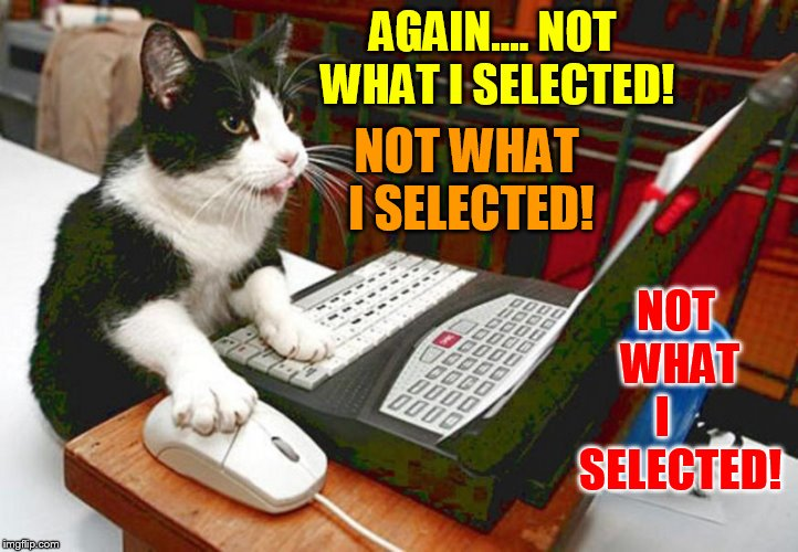 AGAIN.... NOT WHAT I SELECTED! NOT   WHAT   I      SELECTED! NOT WHAT I SELECTED! | made w/ Imgflip meme maker