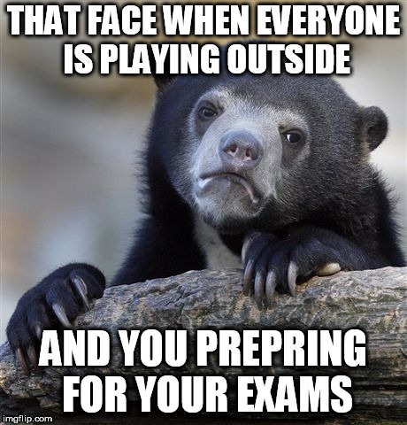 Confession Bear Meme | THAT FACE WHEN EVERYONE IS PLAYING OUTSIDE AND YOU PREPRING FOR YOUR EXAMS | image tagged in memes,confession bear | made w/ Imgflip meme maker