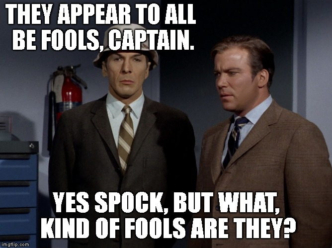 THEY APPEAR TO ALL BE FOOLS, CAPTAIN. YES SPOCK, BUT WHAT, KIND OF FOOLS ARE THEY? | image tagged in spock and kirk - 60's earth | made w/ Imgflip meme maker