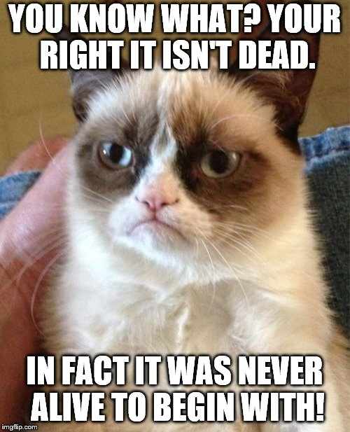 Grumpy Cat Meme | YOU KNOW WHAT? YOUR RIGHT IT ISN'T DEAD. IN FACT IT WAS NEVER ALIVE TO BEGIN WITH! | image tagged in memes,grumpy cat | made w/ Imgflip meme maker