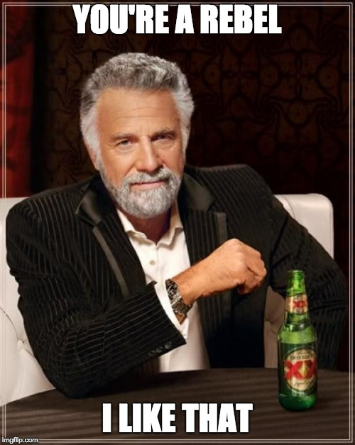 YOU'RE A REBEL I LIKE THAT | image tagged in memes,the most interesting man in the world | made w/ Imgflip meme maker