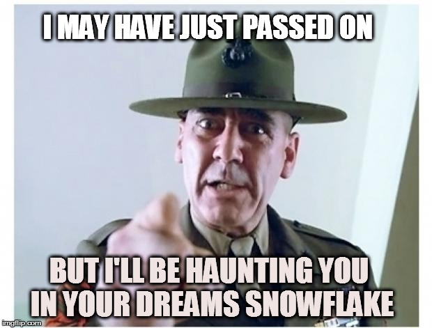 Full metal jacket | I MAY HAVE JUST PASSED ON BUT I'LL BE HAUNTING YOU IN YOUR DREAMS SNOWFLAKE | image tagged in full metal jacket | made w/ Imgflip meme maker