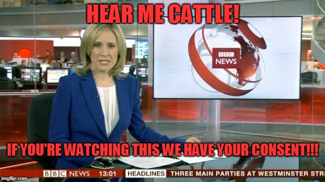 BBC Newsflash | HEAR ME CATTLE! IF YOU'RE WATCHING THIS WE HAVE YOUR CONSENT!!! | image tagged in bbc newsflash | made w/ Imgflip meme maker