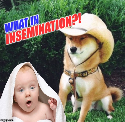 WHAT IN INSEMINATION?! | made w/ Imgflip meme maker